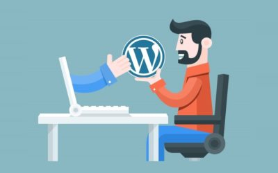 Cómo Saber el  Theme, Tema o Plantilla que usa una Web o Blog
